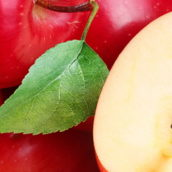Apple cider vinegar and high blood pressure